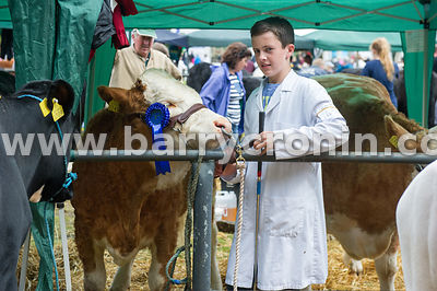 Cian Connoly from Leitrim with his  2nd place Simimental Heifer born after Sept 2014