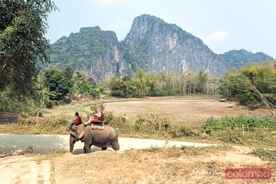 Two women riding an elephant in the forest, Laos