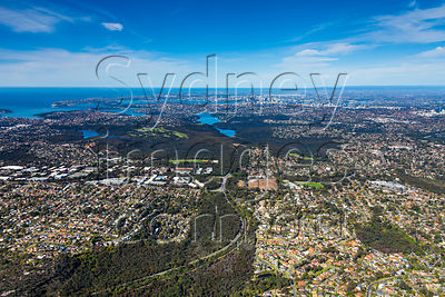 Frenchs Forest to Sydney