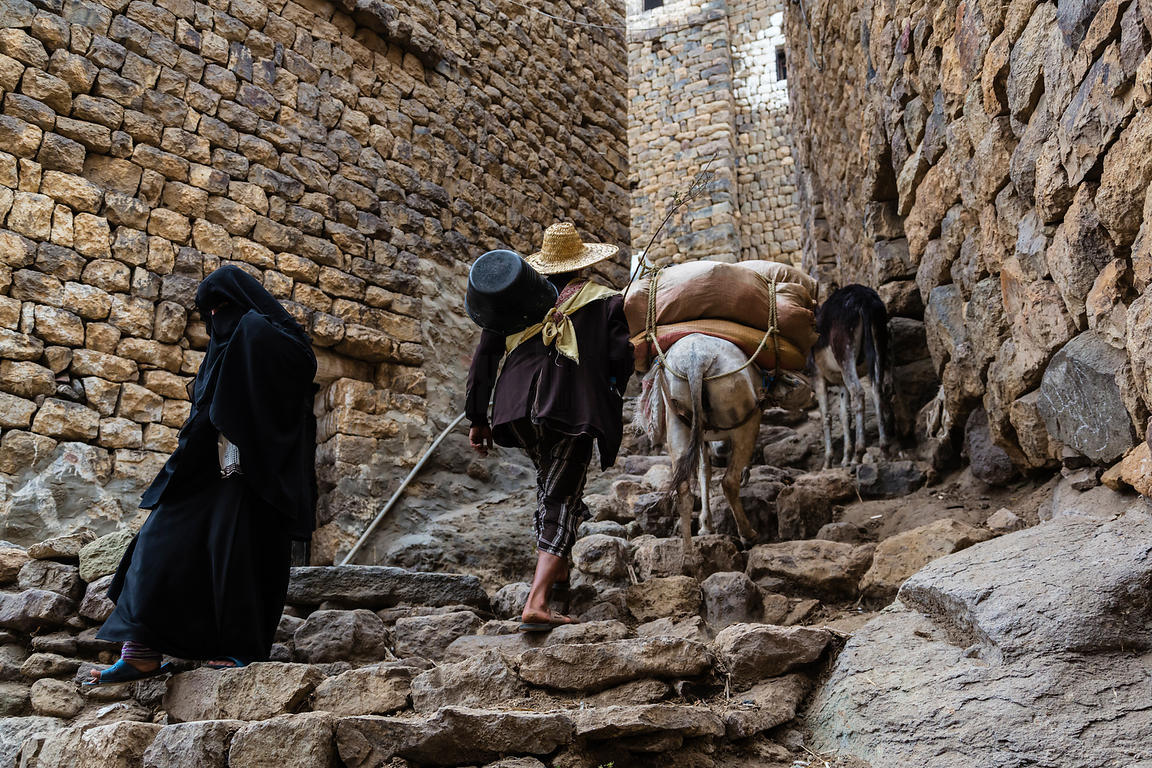 Farmer Leading Donkey up Steps into Town