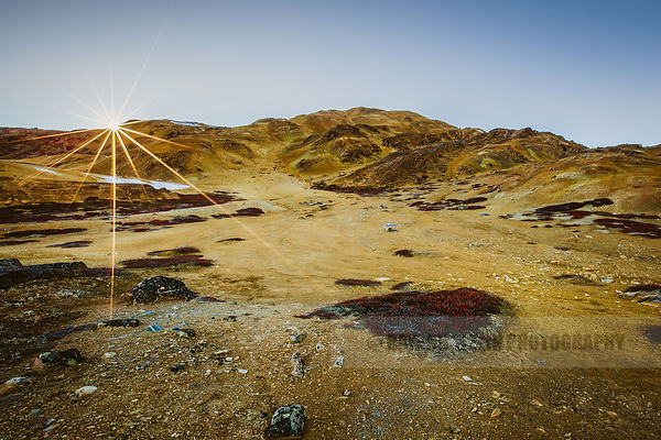 Yellow desert just a few kilometres from Uummannaq in Greenland