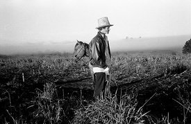 Brazil - Parana - A man and his horse on sqatted land