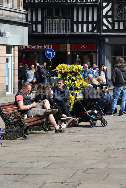 Visitors to Shrewsbury town centre