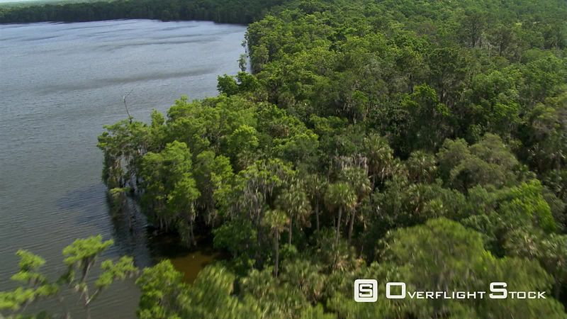 Flight over trees lining a Florida river to wide view of ocean water