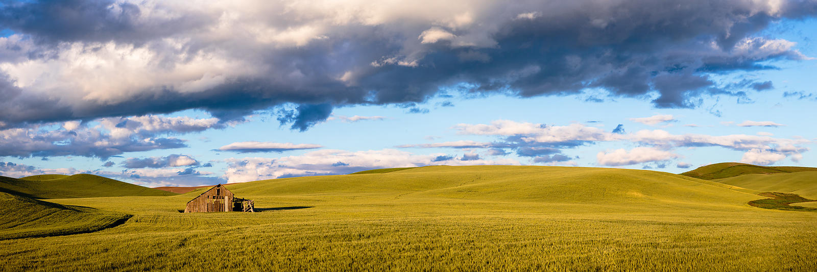 Owen_Roth_Photography-June_18_2016-Palouse_County-1514-Pano-00028