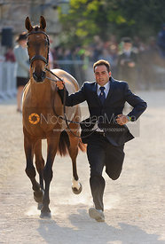 Albert Hermoso Farras and HITO CP - Mitsubishi Motors Badminton Horse Trials 2013