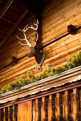 Austria, Tyrol, Alpbach, Wooden house with deer head