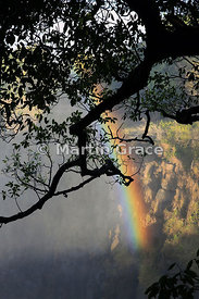Rainbow forming in the mist over First Gorge, Victoria Falls, Zimbabwe and Zambia