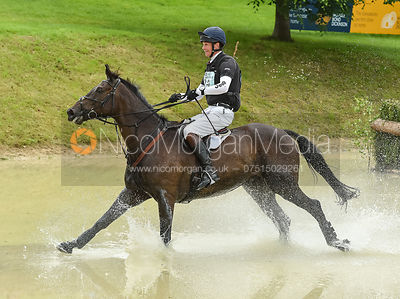 William Fox-Pitt and ORATORIO II, Equitrek Bramham Horse Trials 2018