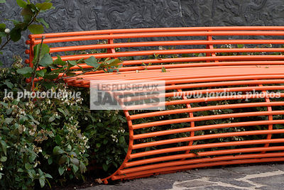Bench, Contemporary garden, Garden furniture, Orange [Colour], Resting area, Digital