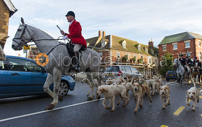 Andrew Osborne MFH and the Cottesmore Hunt hounds