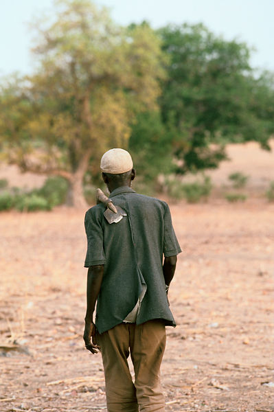 Anafo walks back to his hut after his work with his hoe over his shoulder