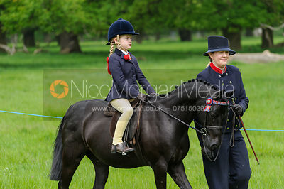 Class 37 - BSPS/P(UK) Brineton Lead Rein Pony photos