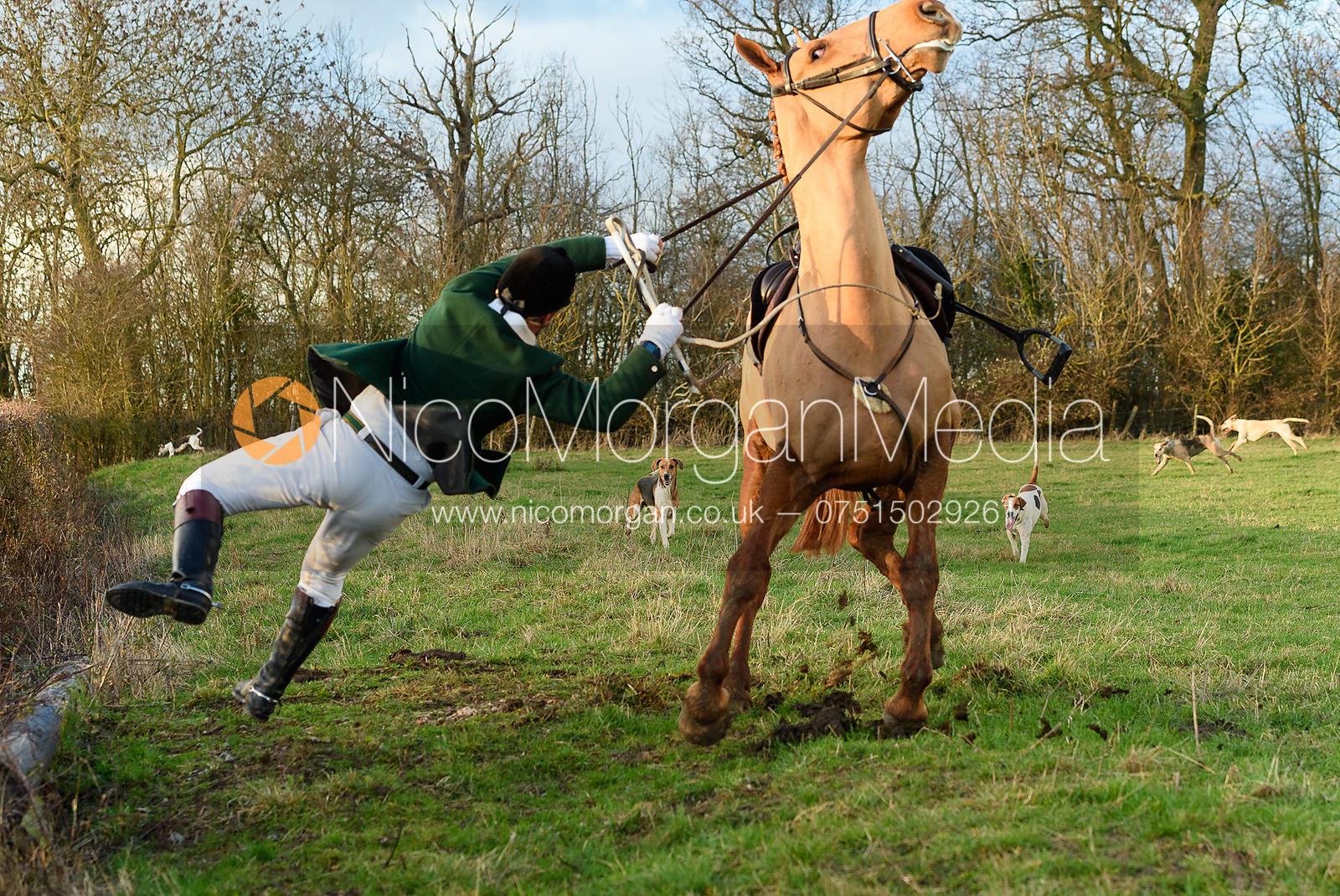 Duncan Maxwell falling from his horse on the third line. The Cambridge University Drag Hounds at Great Gidding 9/12
