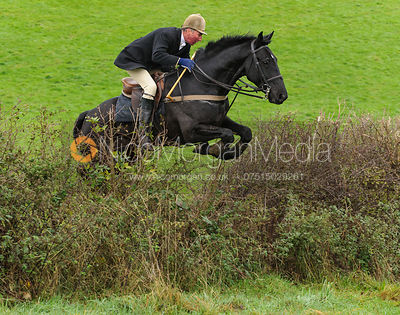 Stuart Campbell - The Cottesmore Hunt at Tilton on the Hill, 9-11-13