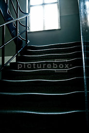 An atmospheric image of some old worn stairs in a derelict building.
