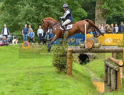 Kate Rocher-Smith and HHS DASSETT APPEAL, Equitrek Bramham Horse Trials 2018
