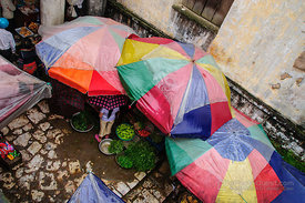 Umbrellas at Stalls in Sapa Market