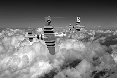P-51 Mustangs black and white version