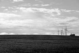 Black and white: Distant grain bins and wind towers