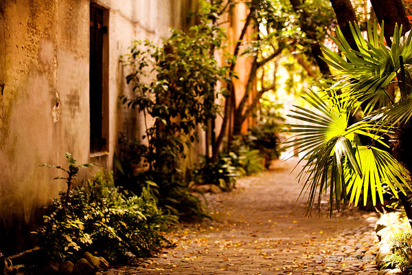 PHILADELPHIA ALLEY HISTORIC CHARLESTON SOUTH CAROLINA