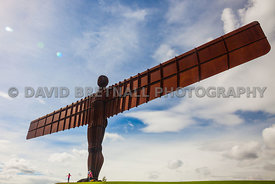 The Angel Of The North (Anthony Gormley)