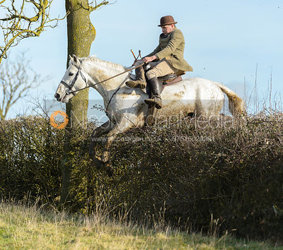 Bruce Langley McKim jumping a hedge near Ladywood - The Cottesmore at Priory Farm