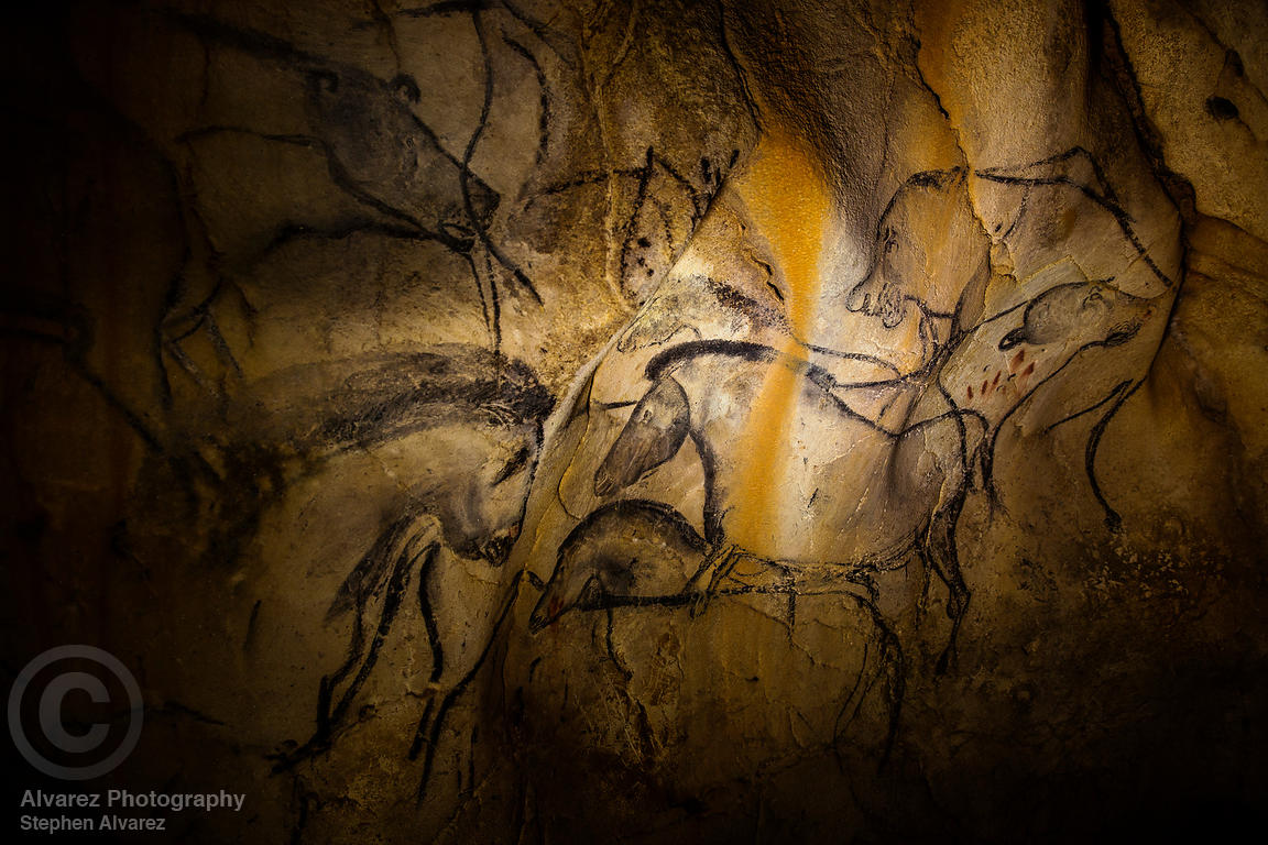 A portion of the Horse Panel in Chauvet Cave, France.