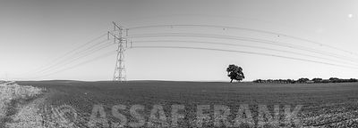 High voltage electricity pylon on green fields