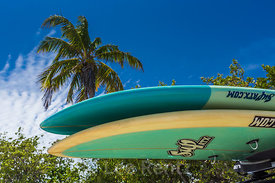 Stand-up Paddle Boards in Bahia Honda State Park