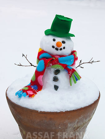Snowman in flower pot