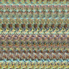 AUTOSTEREOGRAM DNA Qualia's Bridge 5
