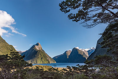 Milford Sound overlook