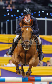George Whitaker and Tubana, Horse of the Year Show 2010