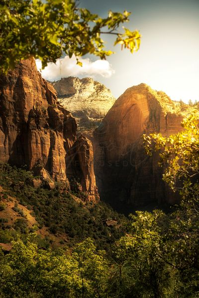 Golden Sunrise in Zion Canyon National Park
