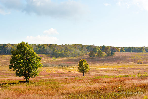 BIG MEADOWS PRAIRIE SHENANDOAH NATIONAL PARK VIRGINIA COLOR
