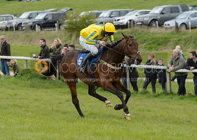 THETALKINGHORSE (Sam Davies-Thomas) - Race 3 Mens Open - Quorn Gold Cup - The Quorn Point-to-Point 2017