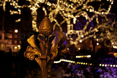 Fancy Wrought Ironwork Outside the Natural History Museum at Night with Christmas Lights Behind