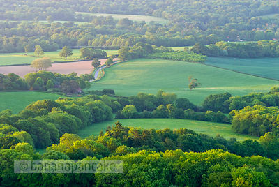 View of Surrey countryside from Leith Hill, Surrey, England.