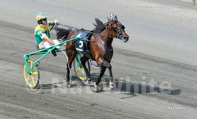 Hambletonian_-2771_August_07_2010_