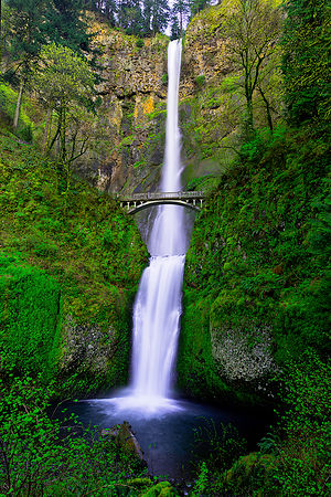 Along Oregon's historic Highway 30 is this feature, Multnomah Falls. As you enter the place, its dreamy mood immediately caug...