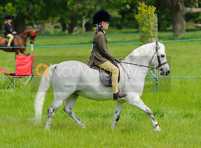 Class 19 - Baston South Lincs Show 2016
