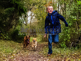two dogs running after boy in woods