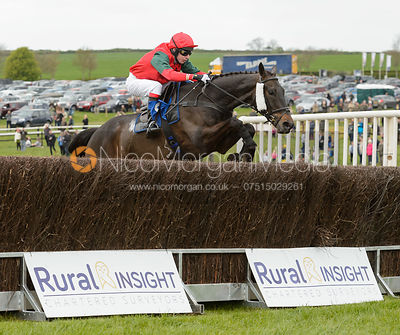 WARDEN HILL (Tom Chatfeild-Roberts) - Race 3 Mens Open - Quorn Gold Cup - The Quorn Point-to-Point 2017