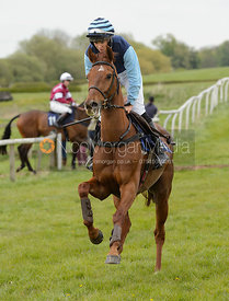 Race 5 - The Quorn Point-to-Point 2017
