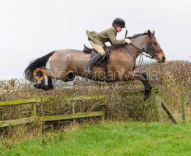 Ned Forryan jumping at Stone Lodge Farm - The Cottesmore Hunt at Tilton on the Hill, 9-11-13