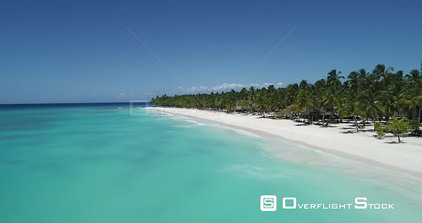 Caribbean beach and palm trees. Low altitude flight forward going up . Saona Island, Dominican Republic