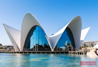 the Oceanographic, City of Arts and Sciences, Valencia, Spain