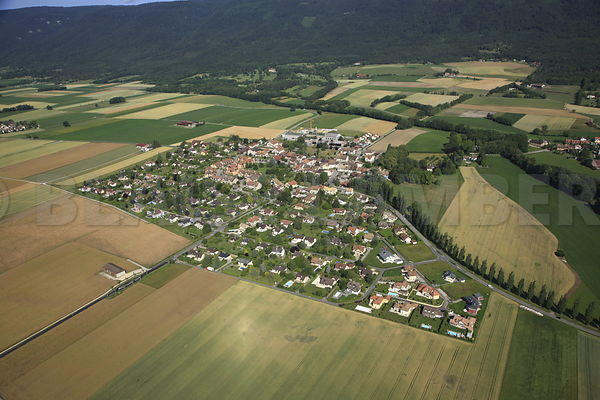 Village de Cheserex