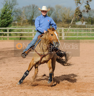 Stock photo of western rider reining